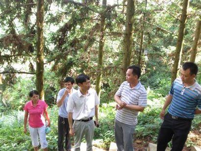 人员到信丰林木良种场学习