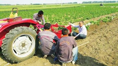 他,就是青岛洪珠农业机械有限公司总经理吴洪珠.